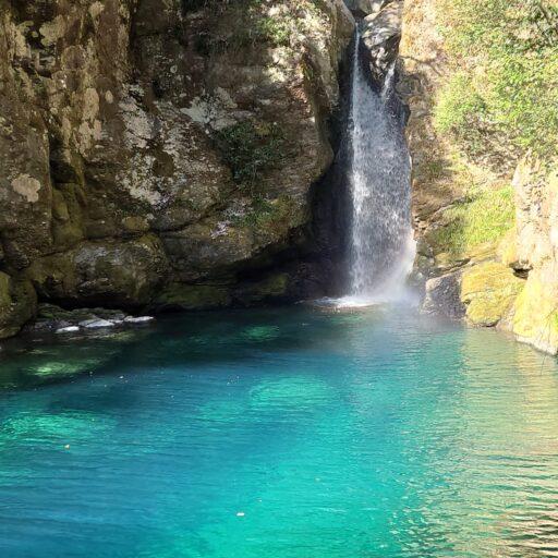 【高知県】観光スポットの紹介記事